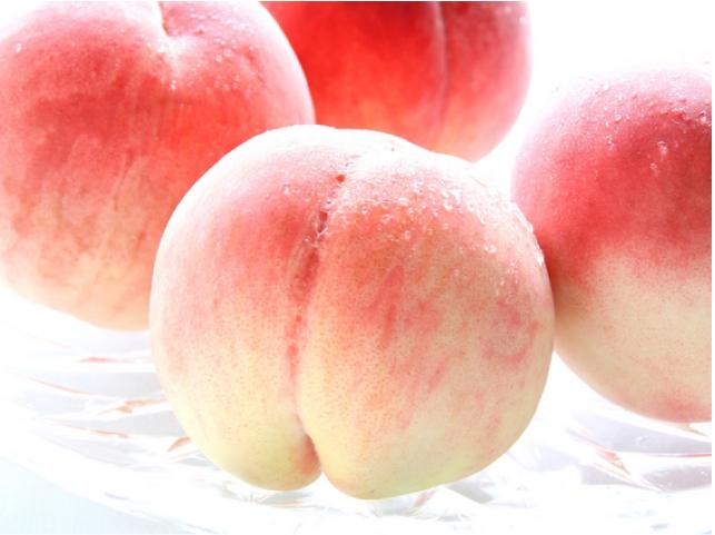白桃の緑茶 桃イメージ