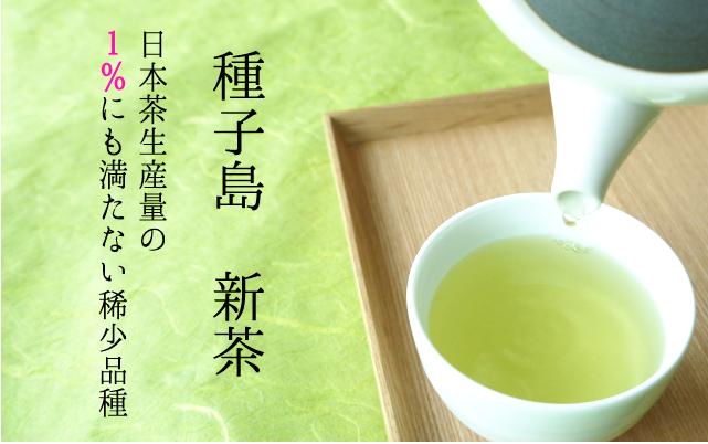 種子島新茶バナー400